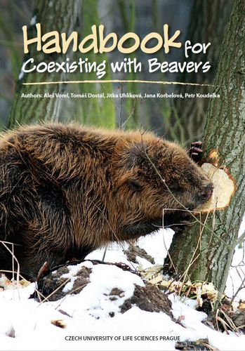 Handbook for Coexisting with Beavers
